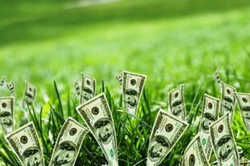 Prácticas ambientales sostenibles en la economía